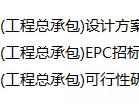 青岛文化娱乐中心项目招标文件及可行性研究报告(含图纸,设计方案)